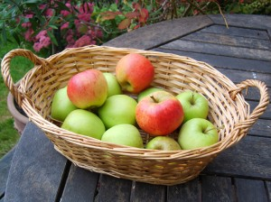 Basket off apples